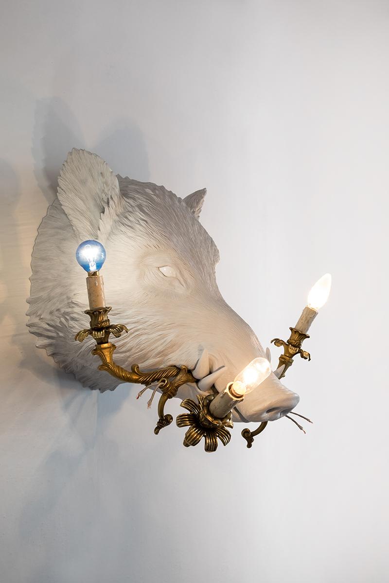 WHAT A BOAR! (BOAR WITH LAMPS) - Marcantonio design